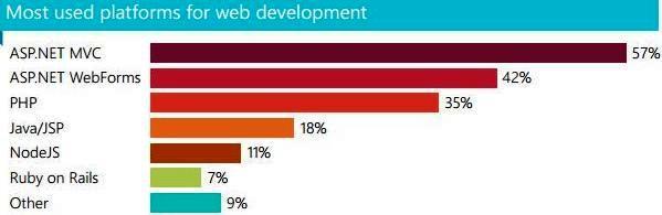best platform for web development