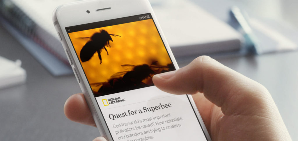 Instant Articles Feature User Reading National Geographic Bee's Article