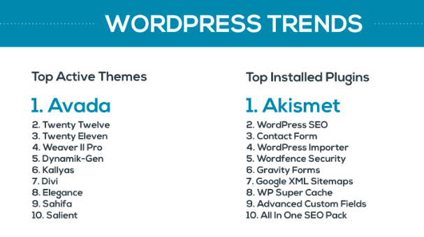 top wordpress themes and plugins
