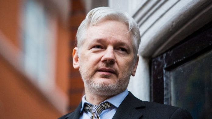jullian assange facts