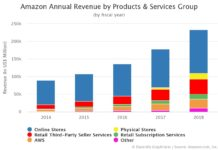 Amazon Annual Revenue by Products & Services Group