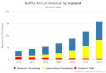 Netflix Annual Revenue by Segment