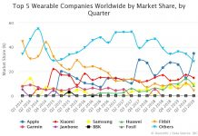 Top 5 Wearable Companies Worldwide by Market Share by Quarter